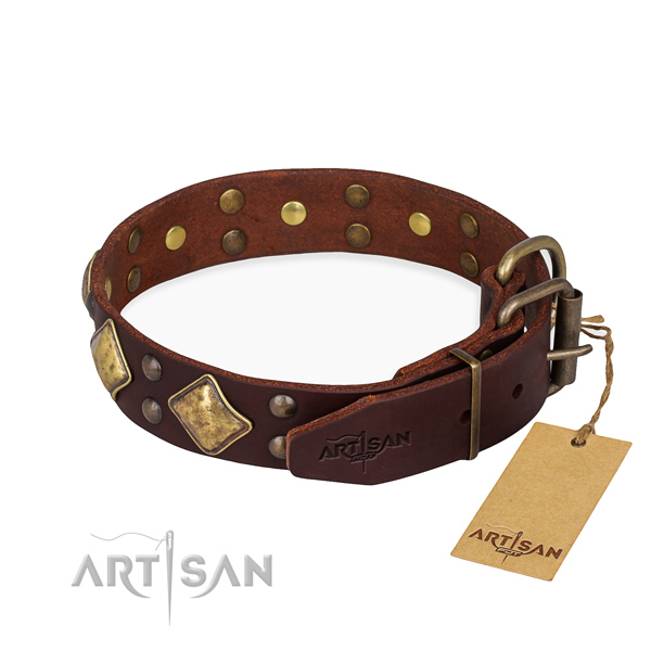 Full grain genuine leather dog collar with remarkable durable embellishments