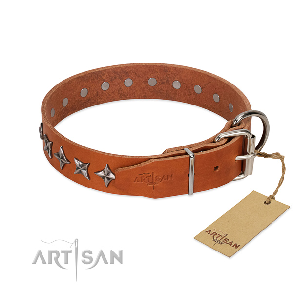 Everyday use adorned dog collar of quality full grain natural leather