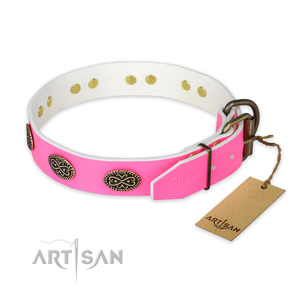 Rust resistant studs on handy use dog collar