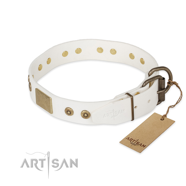 Full grain leather dog collar with corrosion proof fittings and decorations