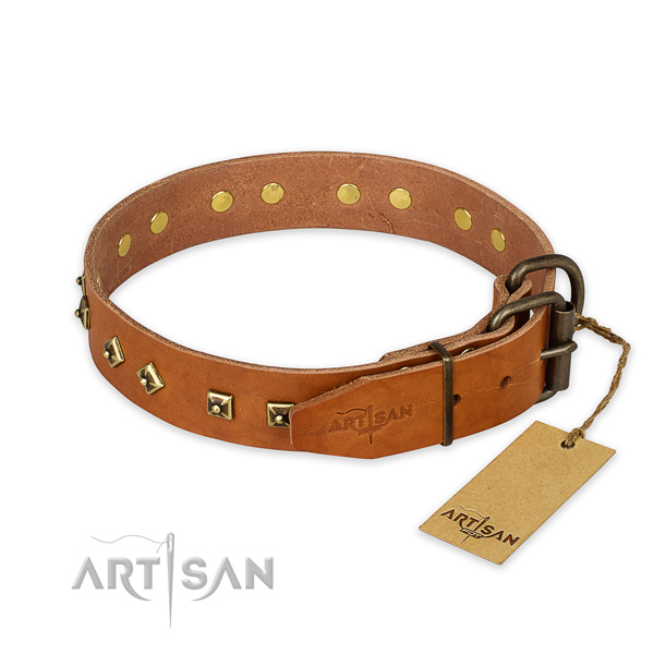 Corrosion resistant fittings on genuine leather collar for basic training your four-legged friend