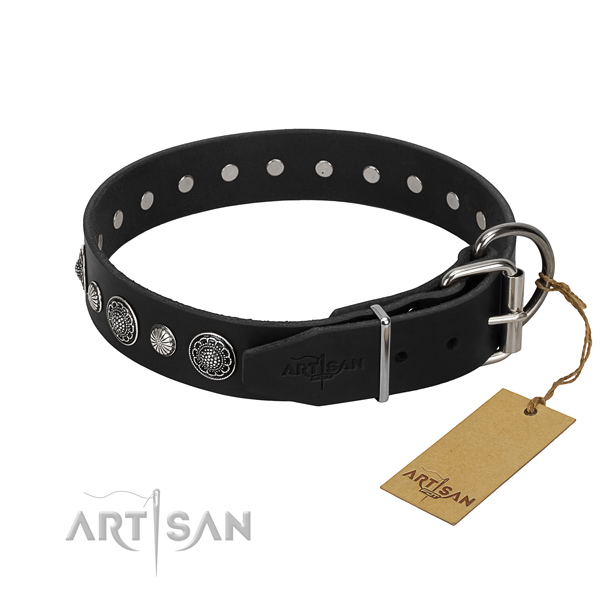 Durable genuine leather dog collar with stunning adornments