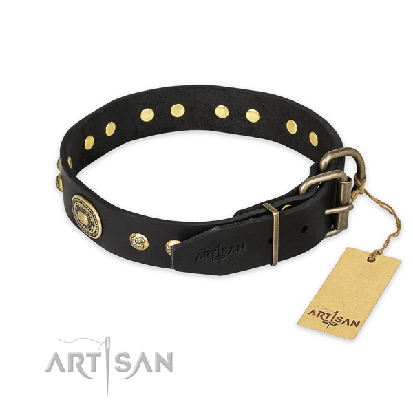 Corrosion proof hardware on leather collar for walking your canine