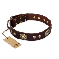 """Breath of Elegance"" FDT Artisan Decorated with Plates Brown Leather Siberian Husky Collar"