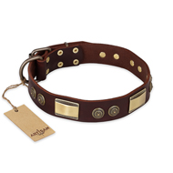 """Golden Stones"" FDT Artisan Brown Leather Siberian Husky Collar with Old Bronze Look Plates and Circles"