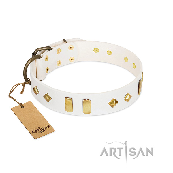 Walking soft to touch full grain natural leather dog collar with embellishments