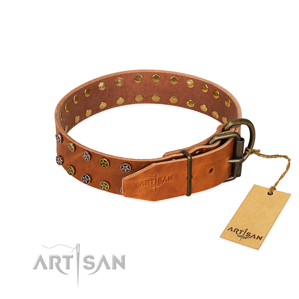 Everyday use leather dog collar with exquisite embellishments