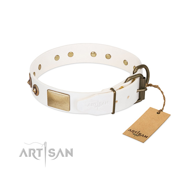 Corrosion resistant embellishments on full grain natural leather dog collar for your canine