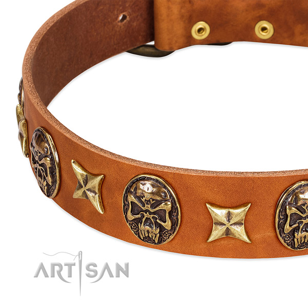 Corrosion proof D-ring on full grain natural leather dog collar for your doggie