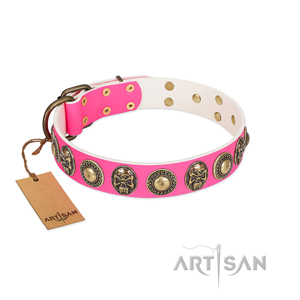 Easy wearing full grain leather dog collar for walking your pet