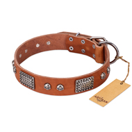 """Sparkling Skull"" FDT Artisan Tan Leather Siberian Husky Collar with Old Silver Look Plates and Skulls"