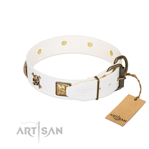 Significant full grain leather dog collar with rust resistant adornments