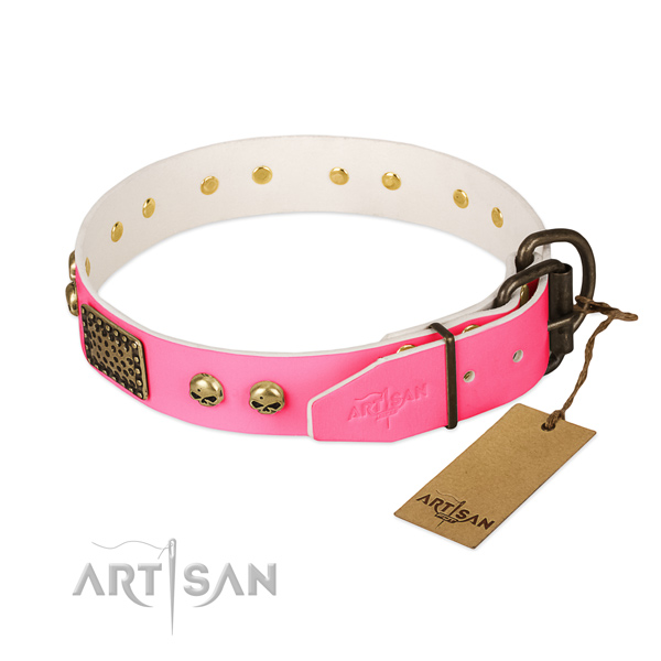 Corrosion resistant embellishments on everyday use dog collar