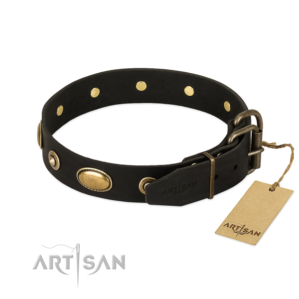 Rust resistant hardware on natural leather dog collar for your dog