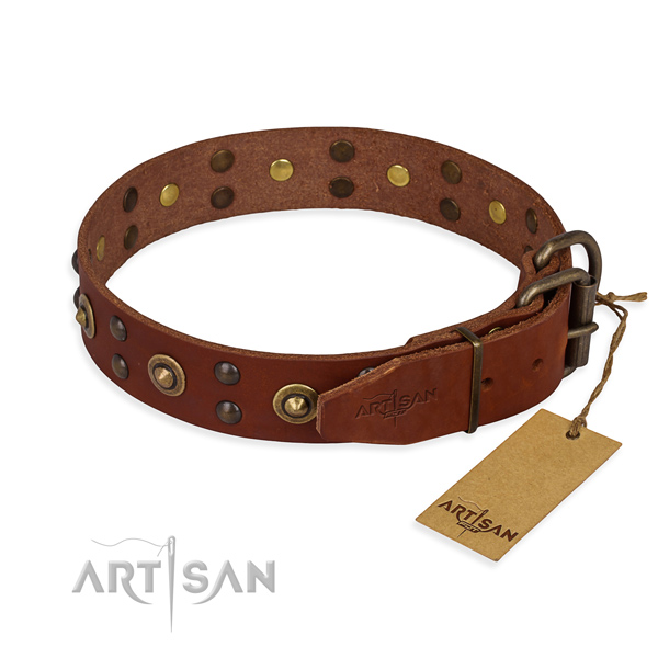 Rust resistant fittings on leather collar for your impressive four-legged friend