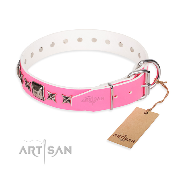 Reliable adorned dog collar of leather