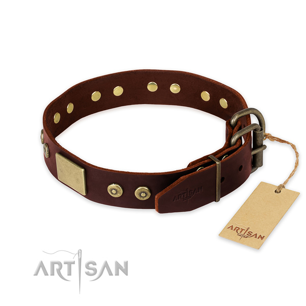 Rust resistant adornments on walking dog collar