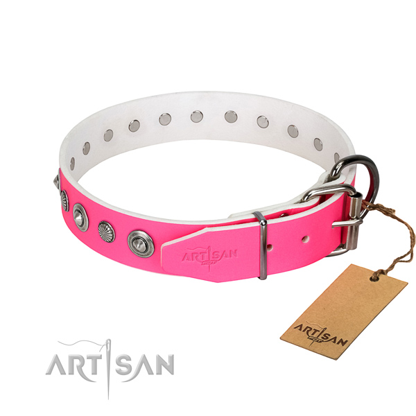 Reliable full grain leather dog collar with exceptional embellishments