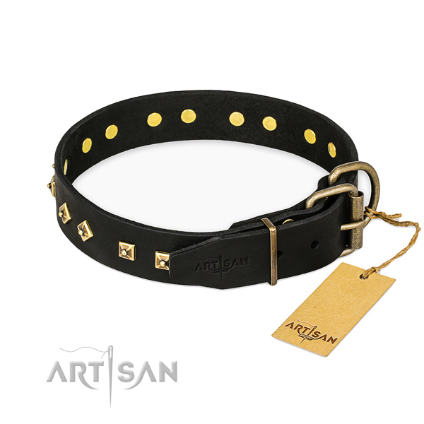 Reliable traditional buckle on leather collar for stylish walking your pet