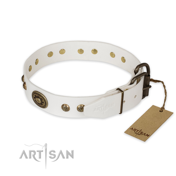Corrosion proof traditional buckle on full grain genuine leather collar for daily walking your pet
