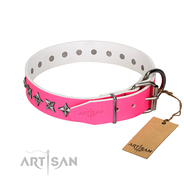 Reliable full grain leather dog collar with exceptional decorations
