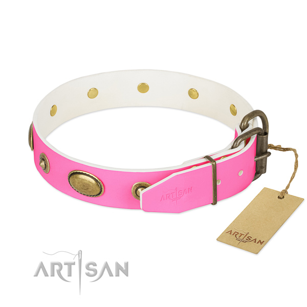 Corrosion proof studs on leather dog collar for your four-legged friend
