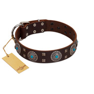 """Hypnotic Stones"" FDT Artisan Brown Leather Siberian Husky Collar with Chrome Plated Brooches and Square Studs"