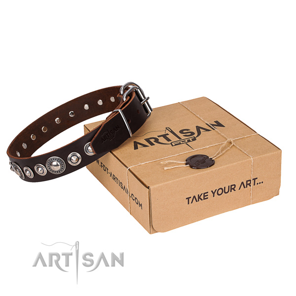 Leather dog collar made of soft to touch material with durable fittings