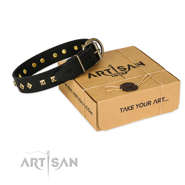 Rust-proof buckle on genuine leather collar for your beautiful four-legged friend
