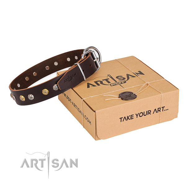 Soft leather dog collar created for walking