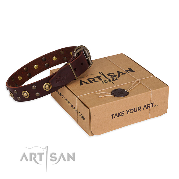 Strong D-ring on full grain natural leather collar for your stylish canine