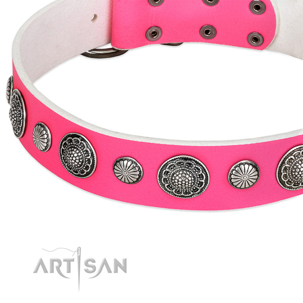Natural leather collar with corrosion proof buckle for your stylish doggie