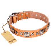 """Glamour Finery"" FDT Artisan Female Siberian Husky collar of natural leather with stylish old-looking circles"