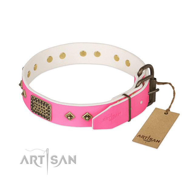 Durable embellishments on everyday walking dog collar