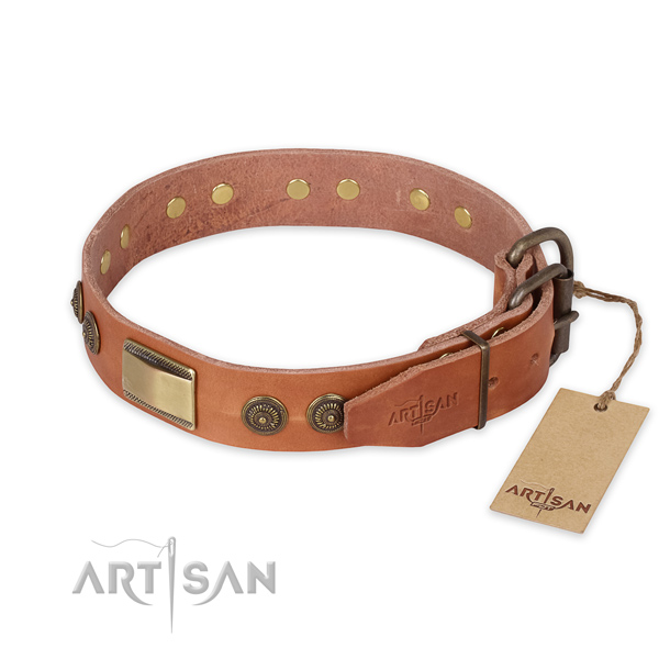 Rust resistant buckle on full grain natural leather collar for daily walking your pet