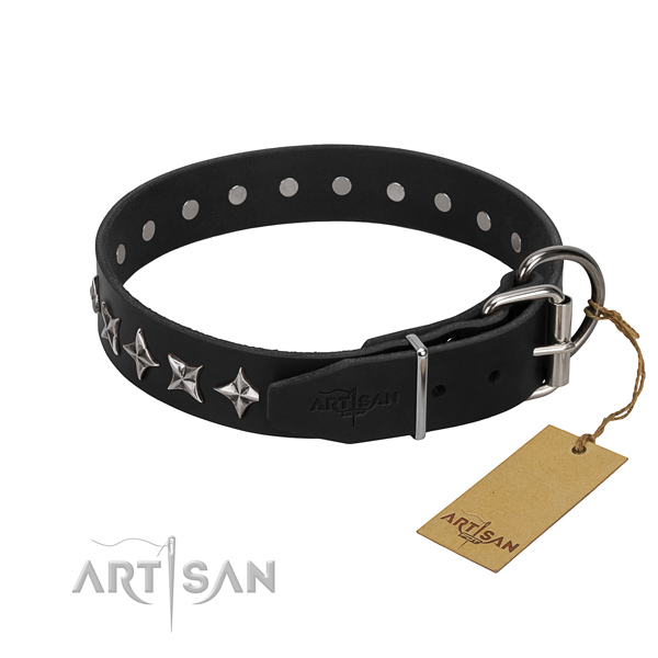 Stylish walking adorned dog collar of top quality full grain genuine leather