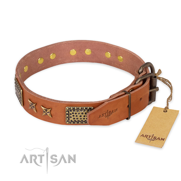 Rust resistant traditional buckle on genuine leather collar for your impressive four-legged friend
