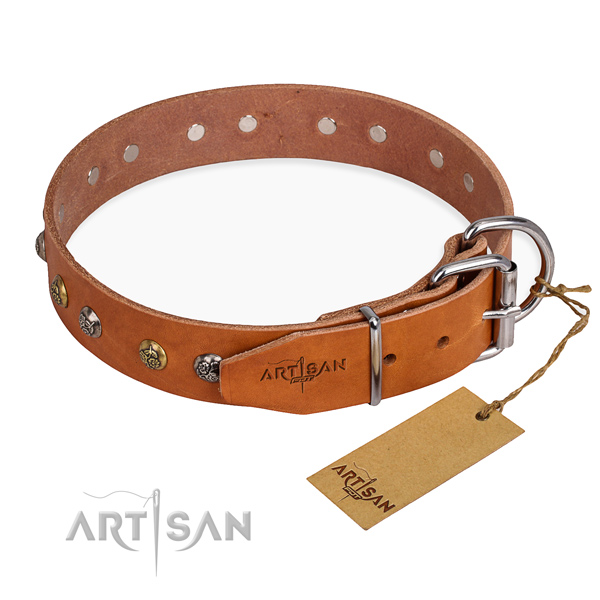 Quality full grain leather dog collar created for basic training