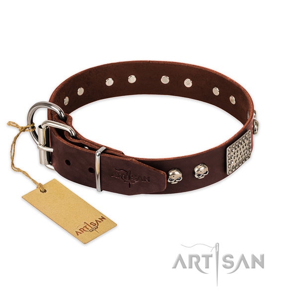 Durable traditional buckle on basic training dog collar