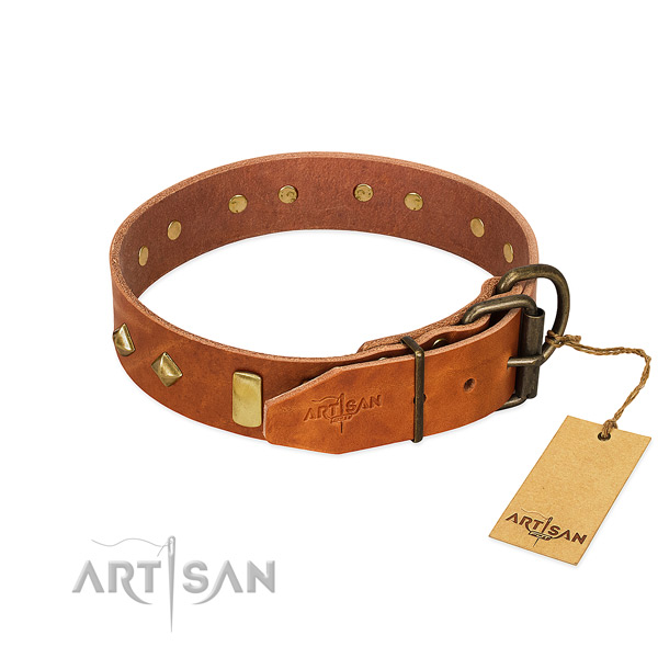 Easy wearing full grain natural leather dog collar with unusual embellishments
