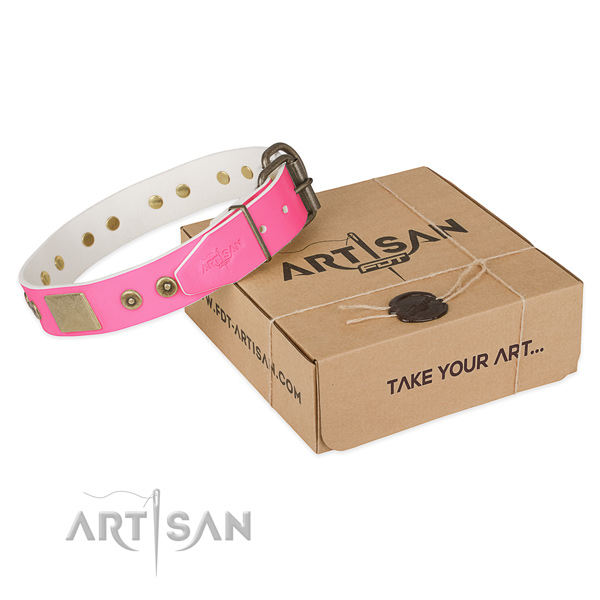 Durable adornments on dog collar for everyday use