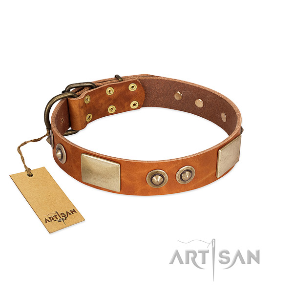 Easy adjustable leather dog collar for basic training your canine