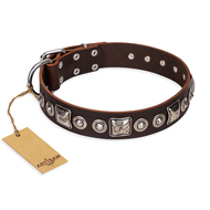 """Pierian spring"" FDT Artisan Brown Leather Siberian Husky Collar with Silvery Decorations"