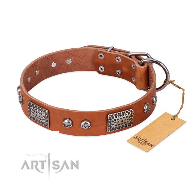 Easy wearing genuine leather dog collar for basic training your pet
