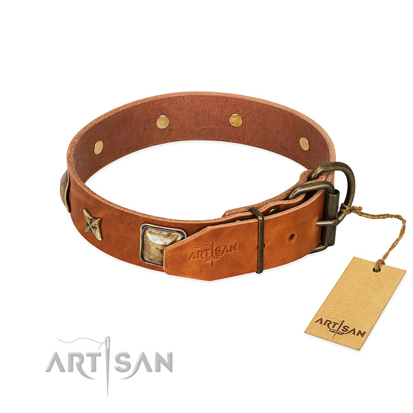 Full grain natural leather dog collar with reliable hardware and embellishments