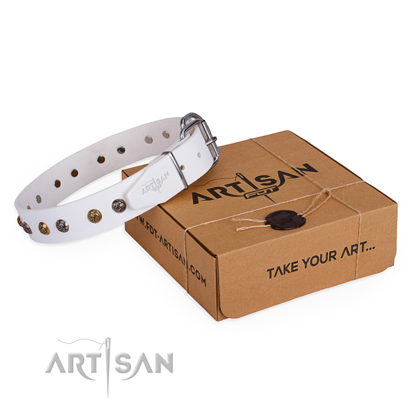 Easy wearing dog collar with Impressive rust resistant embellishments