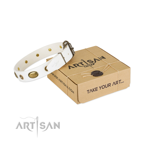 Inimitable full grain natural leather collar for your stylish four-legged friend