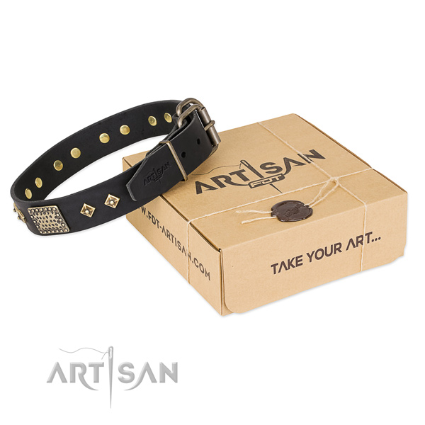 Stylish genuine leather collar for your impressive pet