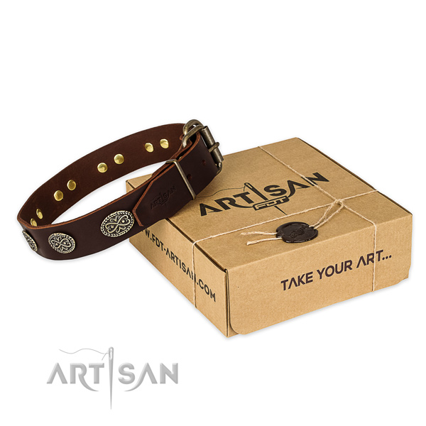 Durable buckle on full grain natural leather collar for your impressive pet