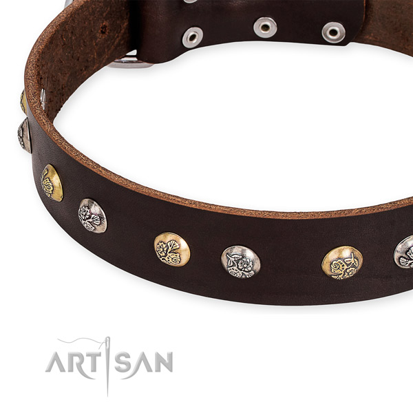 Leather dog collar with amazing rust-proof decorations